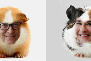 Human Guinea Pigs and the Gates Foundation